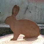 Kaninchen 27,-