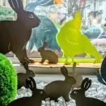 Kaninchen 89,-/27,-