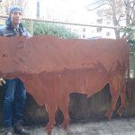 Bulle 240x140cm 490,-