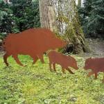 Wildschwein ab 49,-