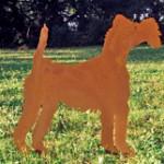 Foxterrier 79,-