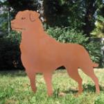 Rottweiler 139,-