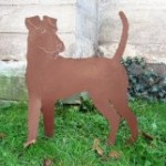 Irish Terrier 79,-